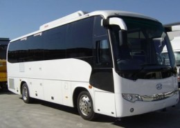 41 Seat Charter Bus (VIC)