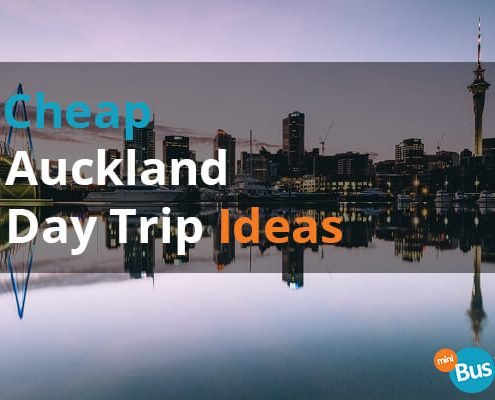Cheap Auckland Day Trip Ideas