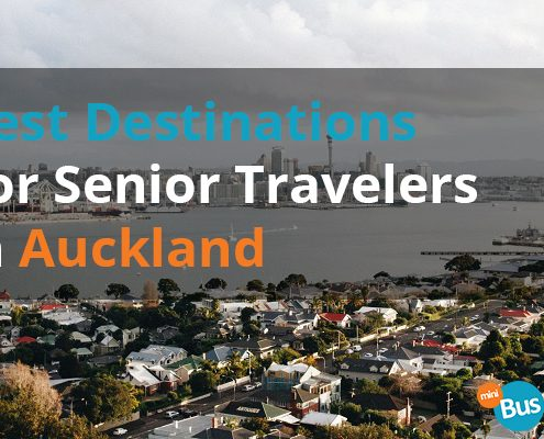 Best Destinations For Senior Travelers In Auckland