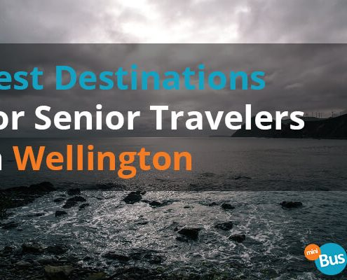 Best Destinations For Senior Travelers In Wellington